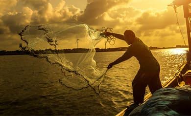 Arte de Pesca menor